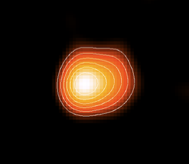 Resolved image of the radio photosphere of the nearby AGB star R Leo
